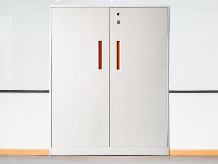 2门指纹矮柜,智能文件柜